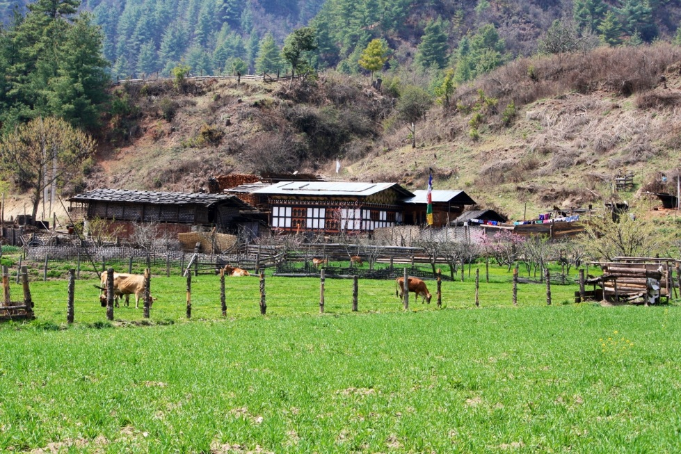 Bumthang landscape, Bhutan, April 2013