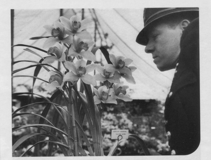 Policeman and orchid, Chelsea Flower Show