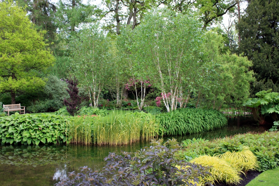 Longstock Park Water Gardens, May 2013