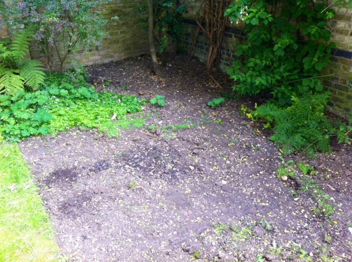 Our London Garden - removing the lawn, June 2013