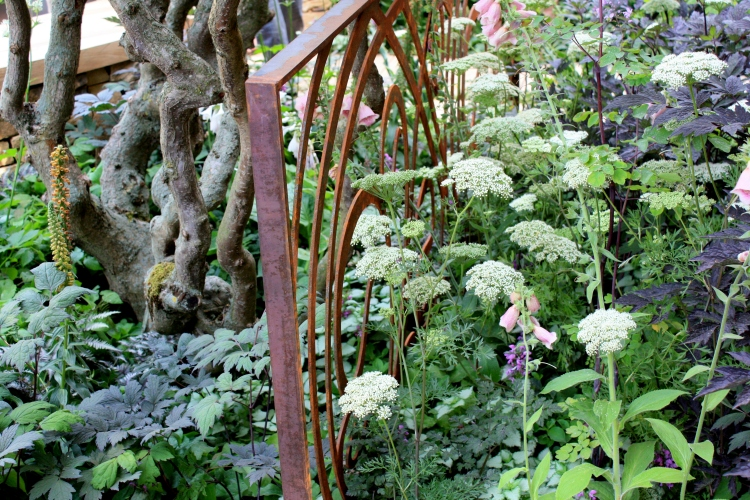 A Cool Garden designed by Ruth Marshall, Hampton Court 2013
