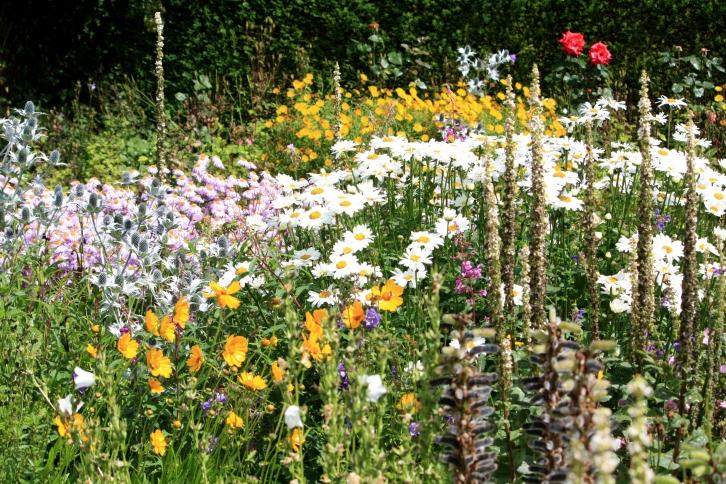 The Flower Garden, Wallington Hall, July 2013