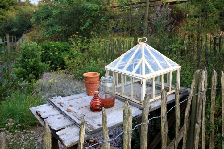 The herb garden, Trevoole Farm, August 2013