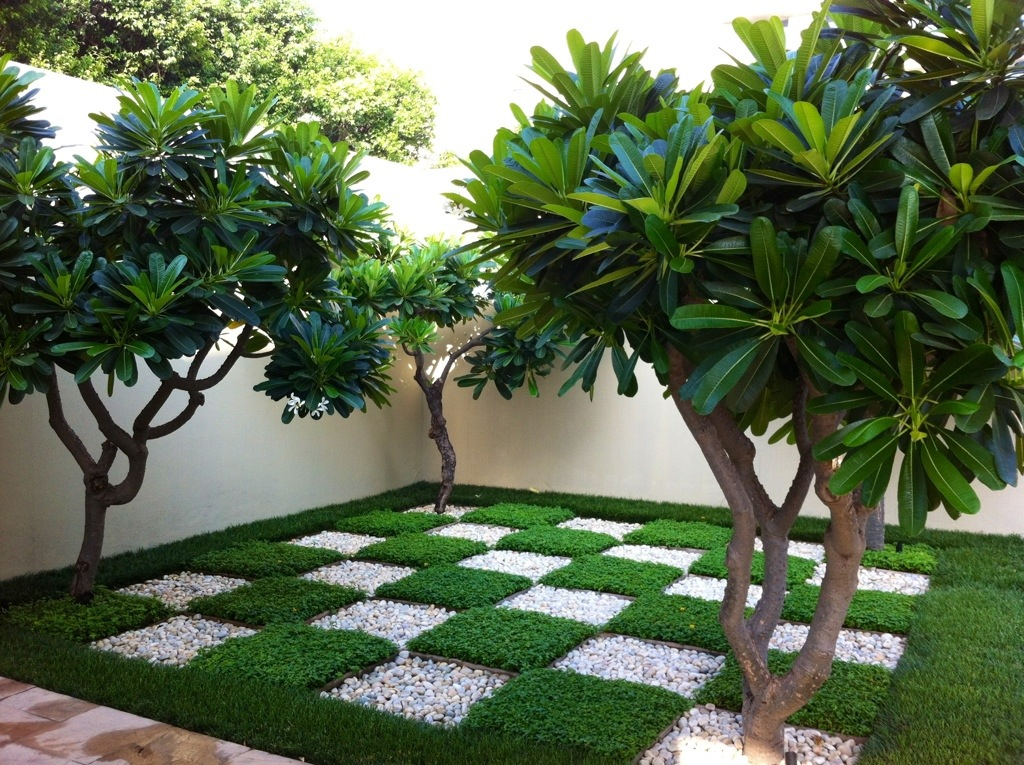 The Trident, Gurgaon, India | The Frustrated Gardener