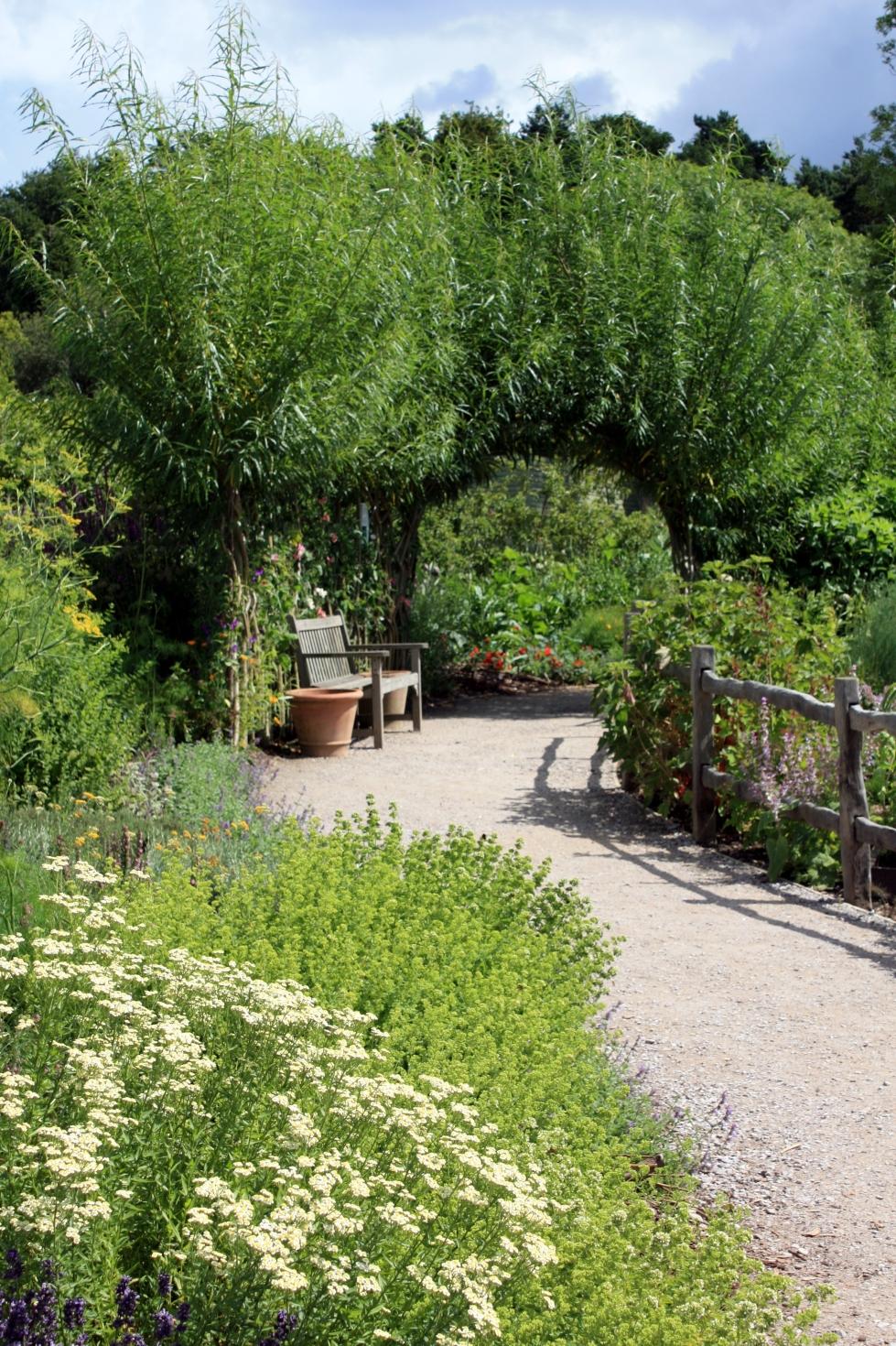 Walk through the vegetable garden, RHS Harlow Carr, July 2013