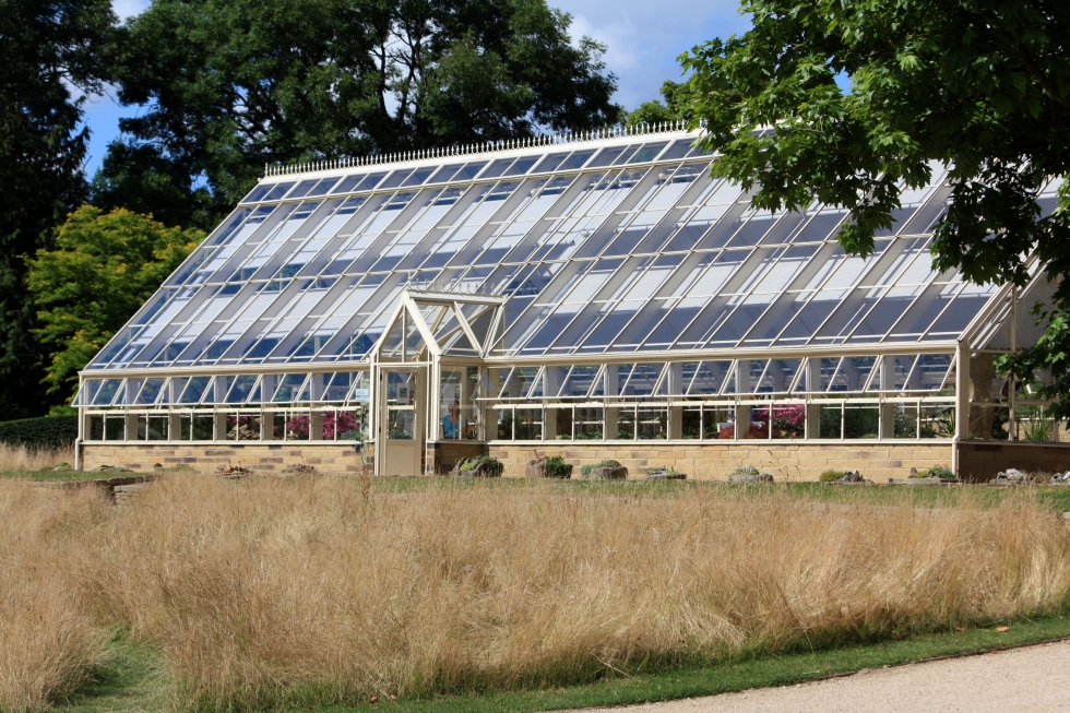 The Alpine House, RHS Harlow Carr, July 2013
