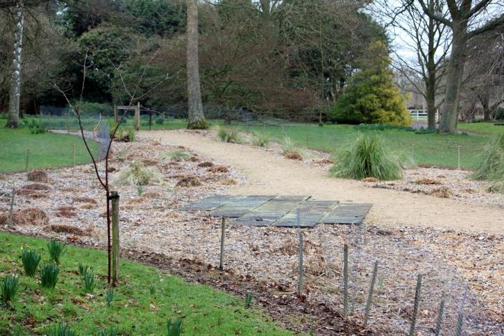 The Gravel Garden in Spring, Goodnestone Park, Sept 2013
