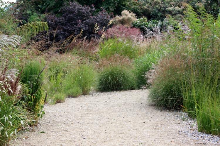 The Gravel Garden, Goondestone Park, Sept 2013
