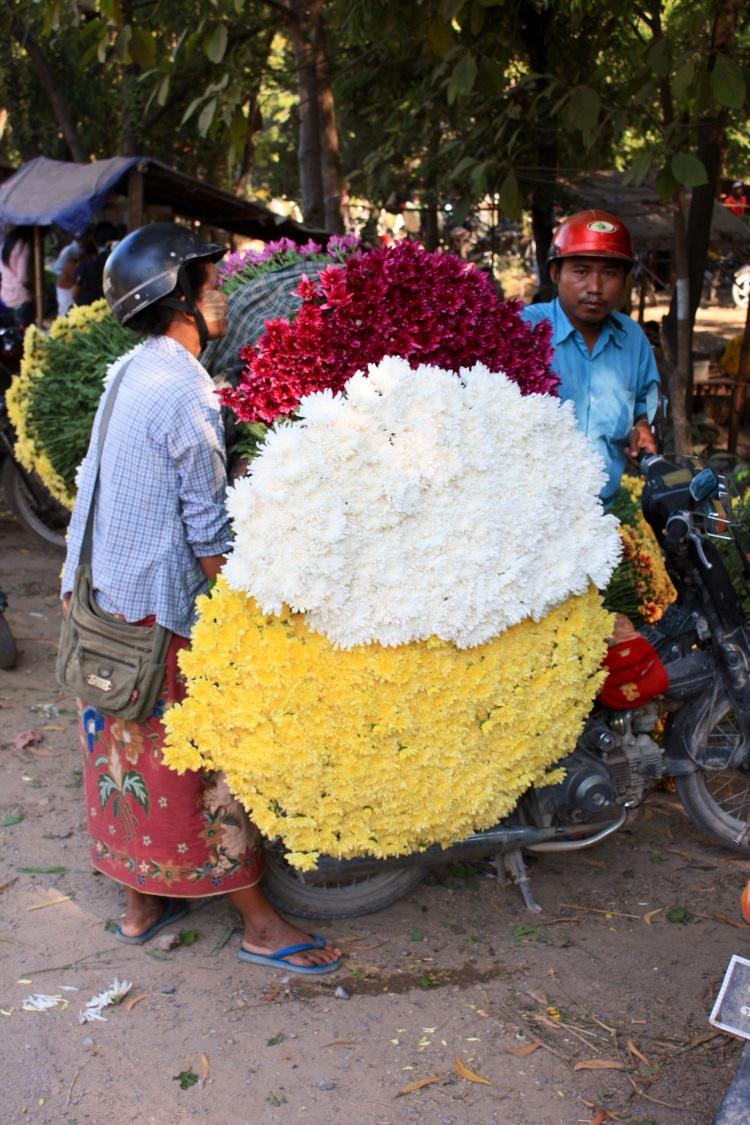 Chrysanthemums, Mandalay Flower Market, October 2012