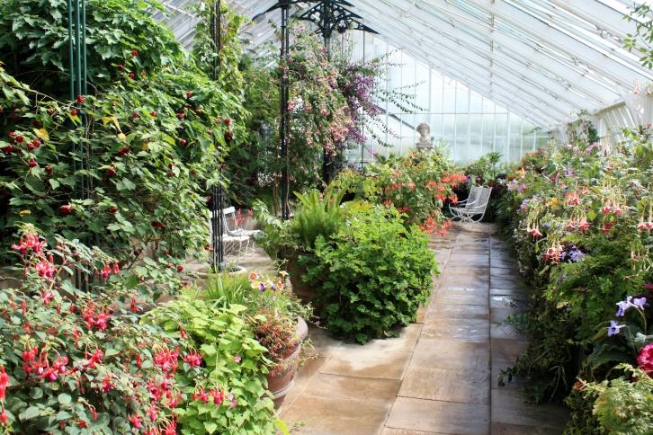 The Edwardian Conservatory, Wallington, Northumberland, August 2013