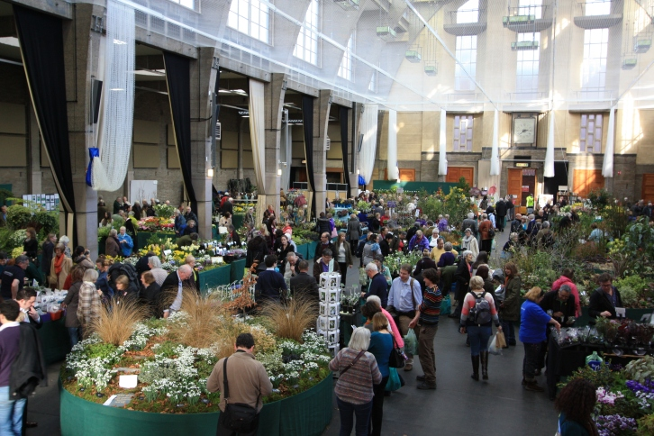 RHS Lawrence Hall, London Plant and Design Show, 2014