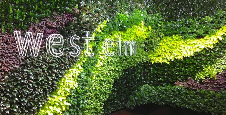 Green wall, West Elm, London, April 2014