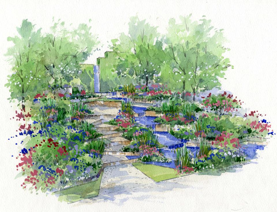 Chelsea flower show 2014 stars of the show a garden for for Garden landscape drawing