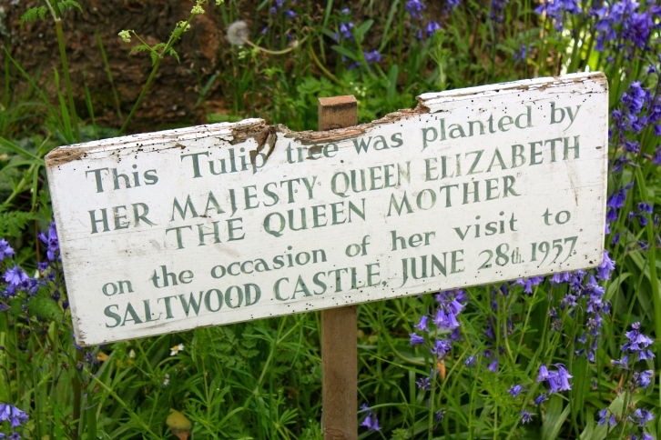 Plaque commemorating the planting of a tulip tree, Saltwood Castle, May 2014