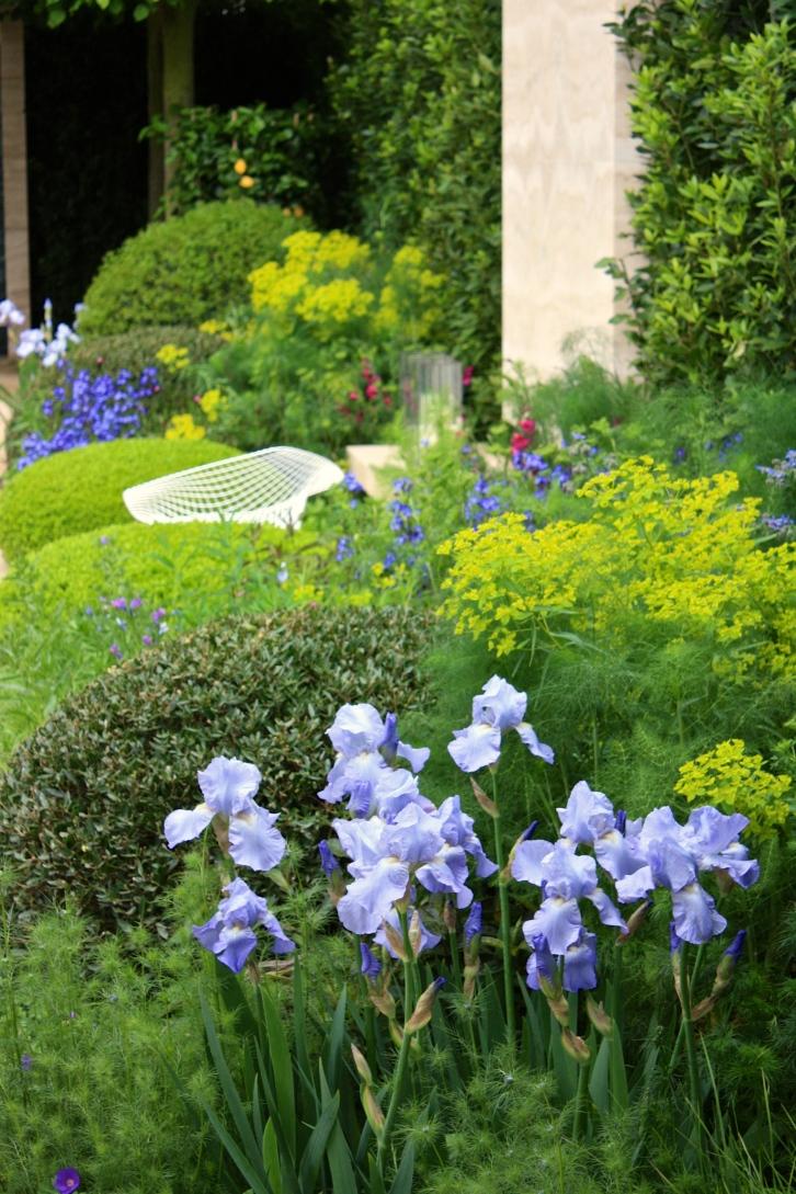 The Telegraph Garden designed by del Buono Gazerwitz, Chelsea 2014