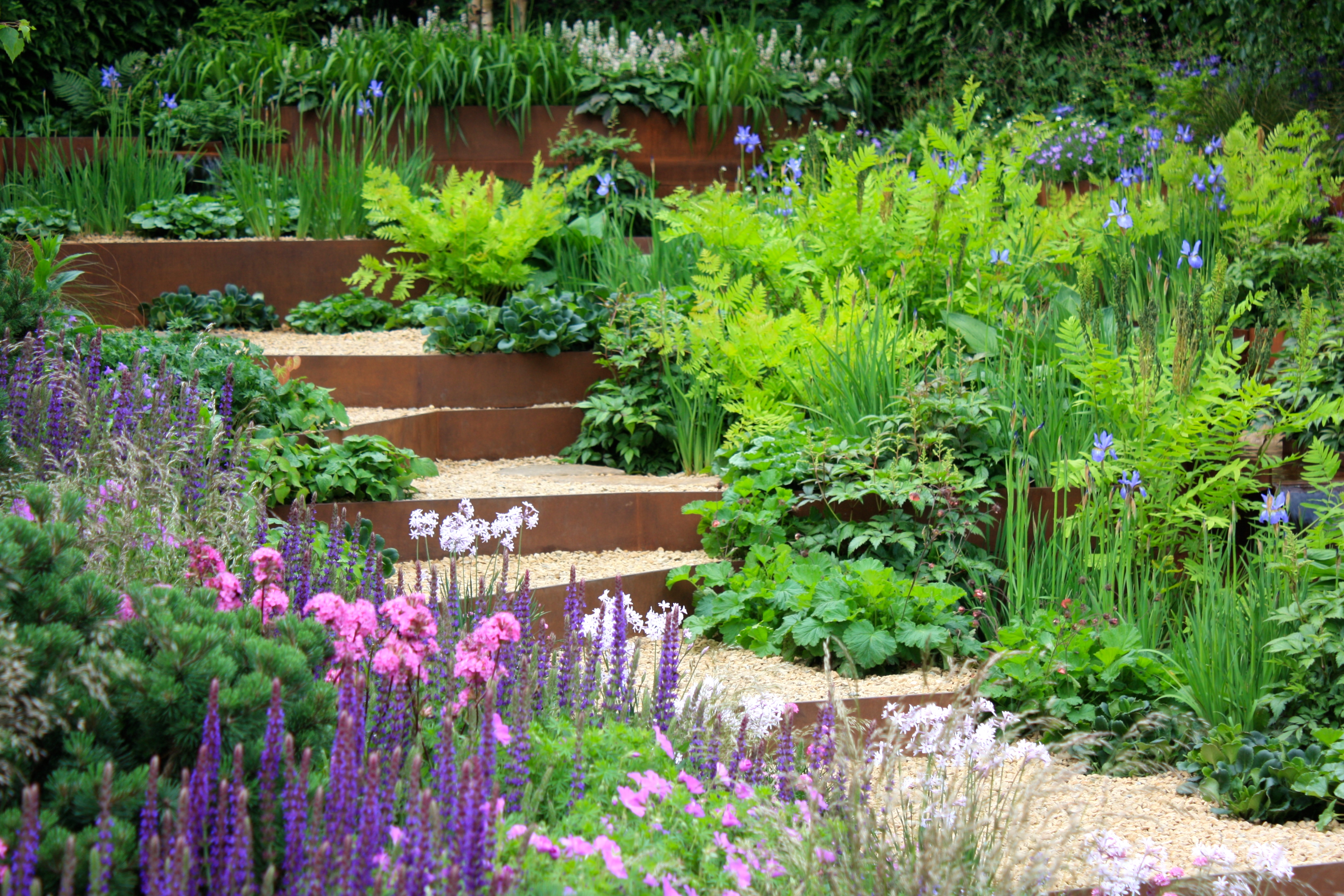 Chelsea flower show 2014 stars of the show a garden for for Garden design planting schemes