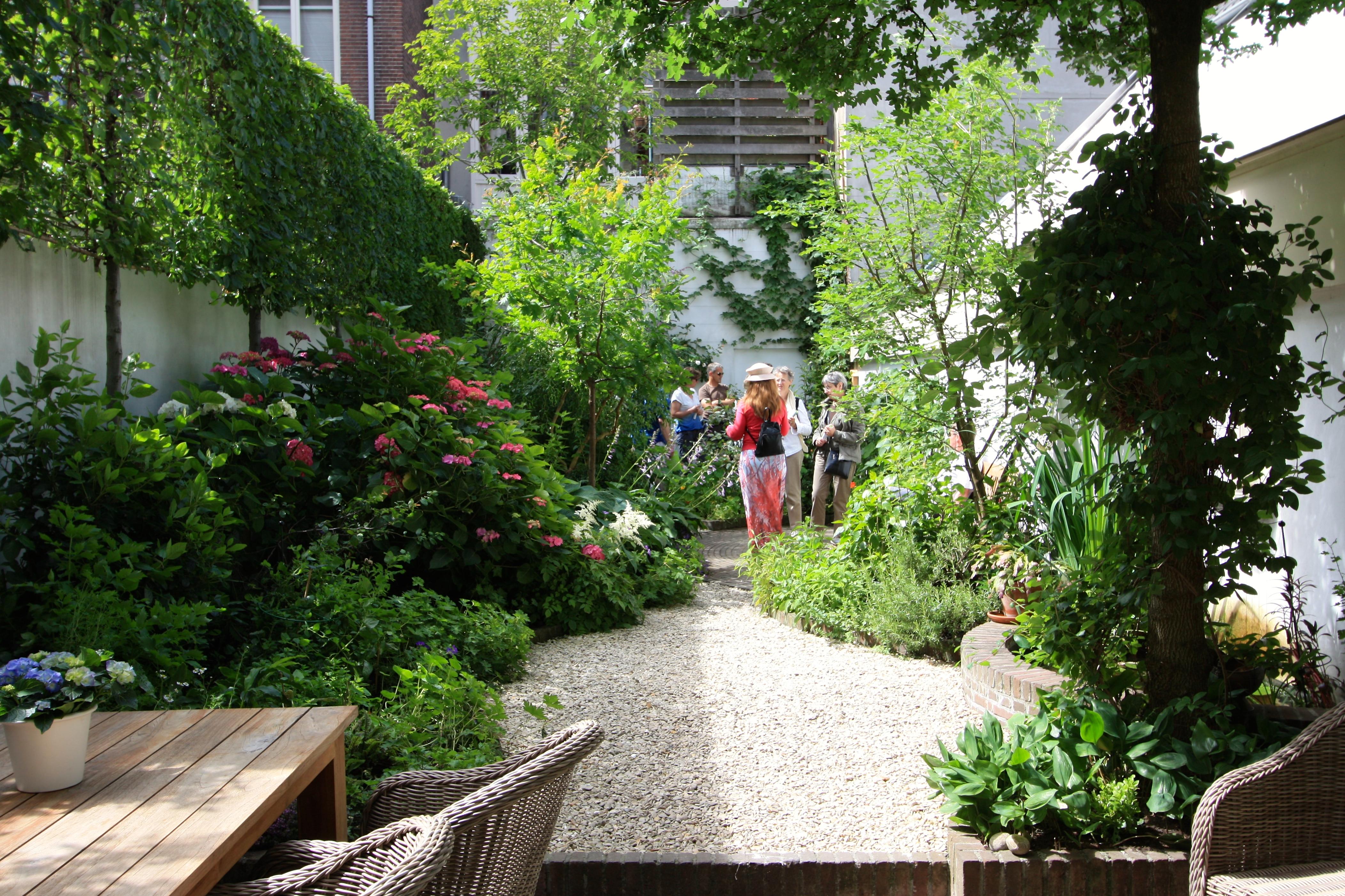 Travel the frustrated gardener for Narrow garden designs