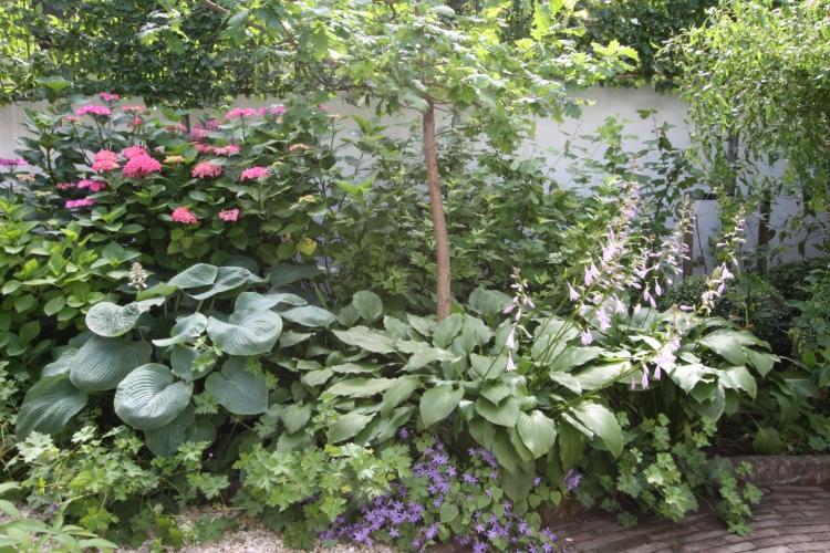 Detail of the garden at Singel 124, Amsterdam, June 2014