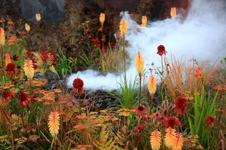 Smoke rising from Nilufer Danis' gold medal winning conceptual garden, entitled 'Wrath'