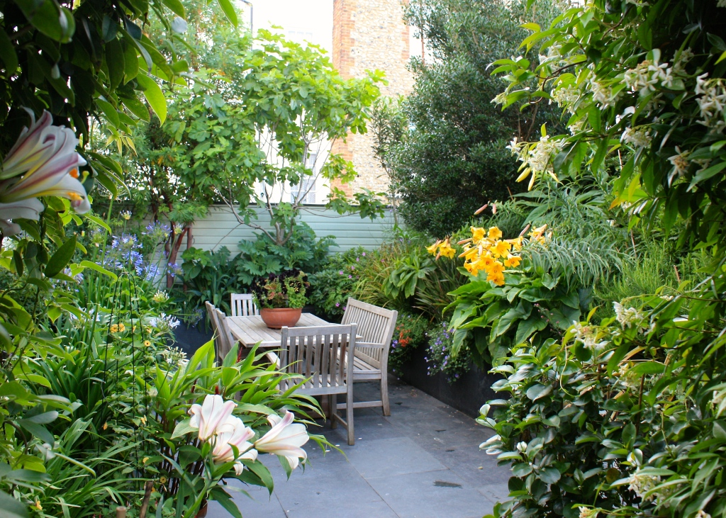 The garden viewed from the narrow passageway which leads from Thanet Road