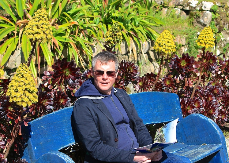 Him Indoors, seated as usual, basks in the sort of sunny position that aeoniums love