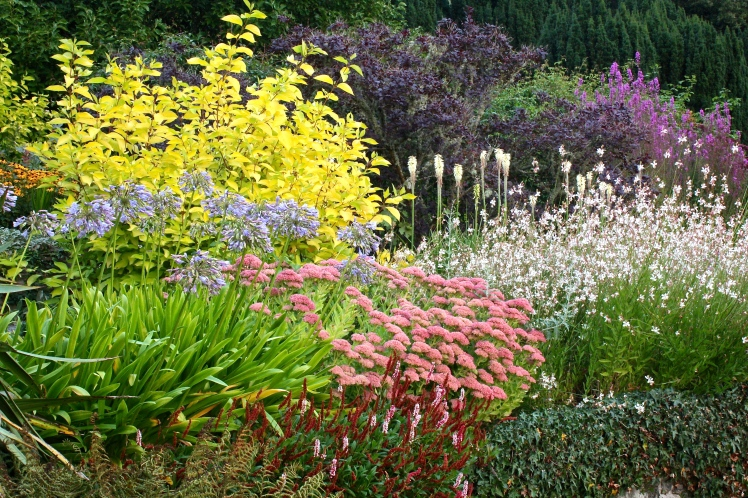 Endsleigh's long border is cleverly planned to be colourful right through the autumn