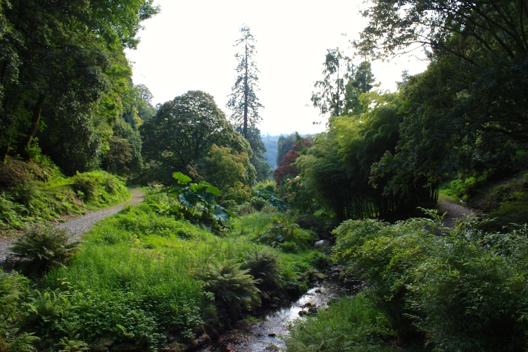 A view down the Dairy Dell from one of Repton's typically rustic bridges