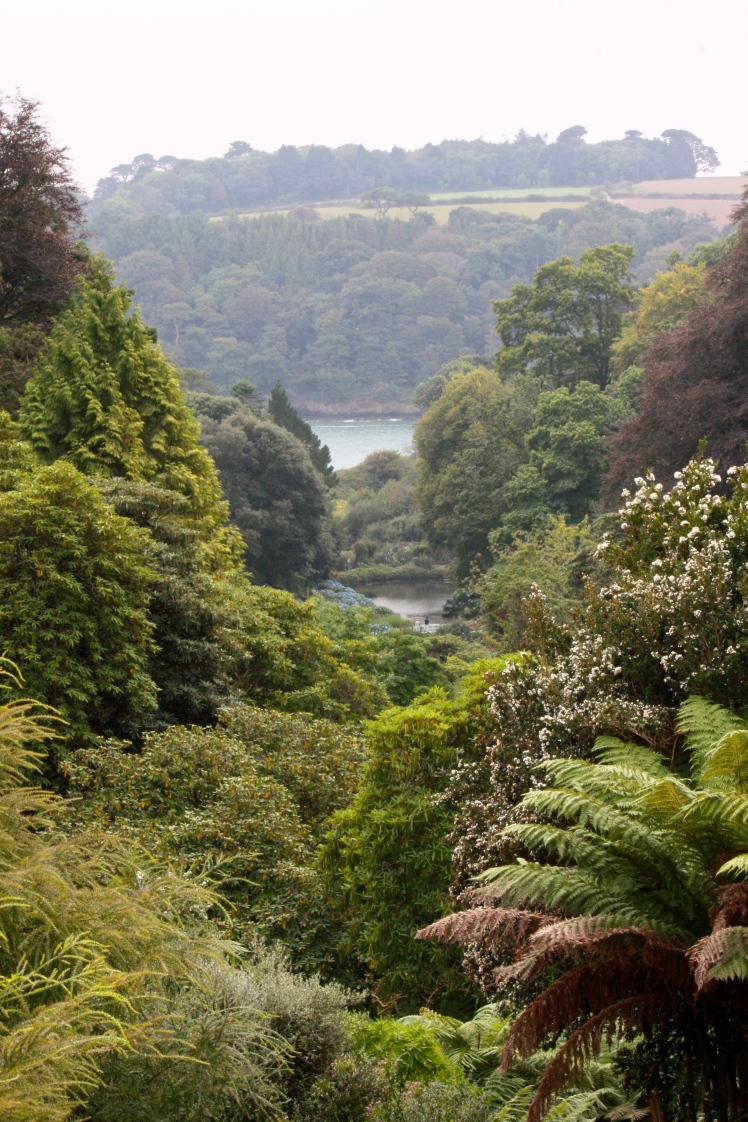 The view from below the top terrace at Trebah with the Helford River in the distance