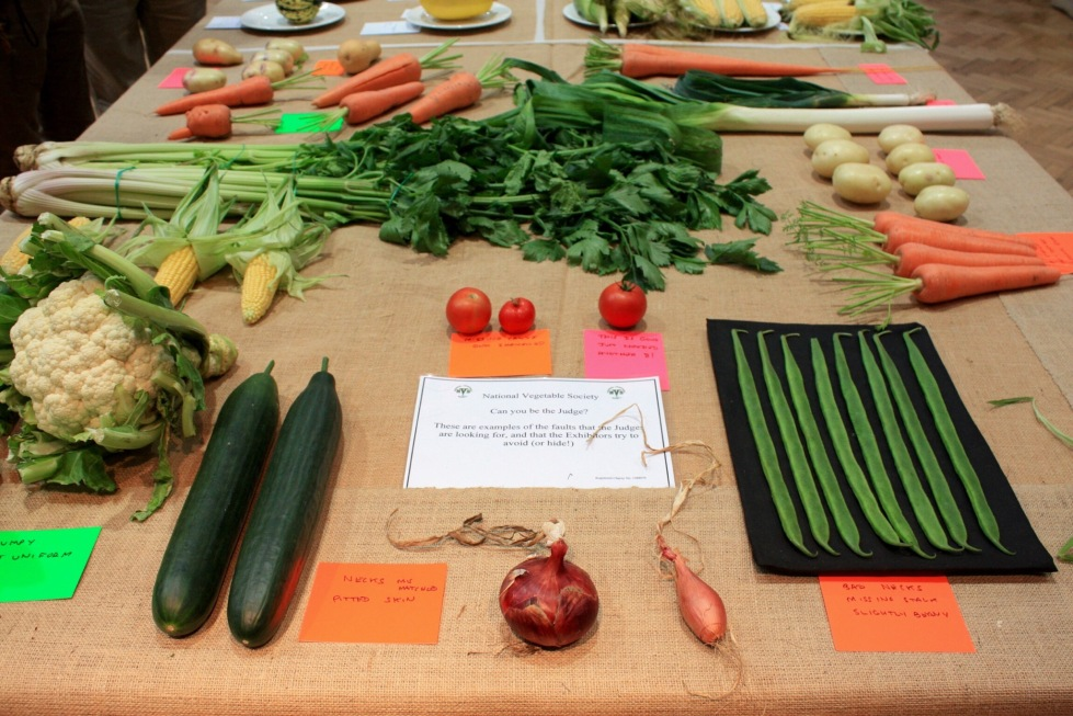What not to do. The National Vegetable Society point out the faults the judges will be looking for