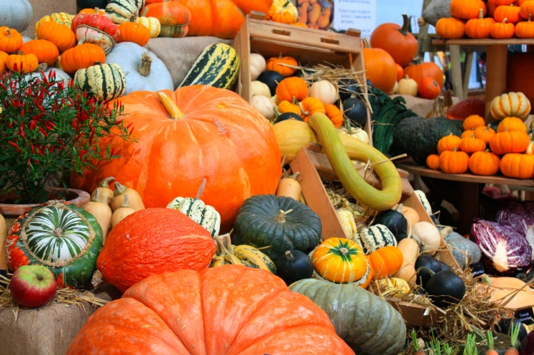 Not long 'til Halloween and the pumpkins and squashes  are in their prime