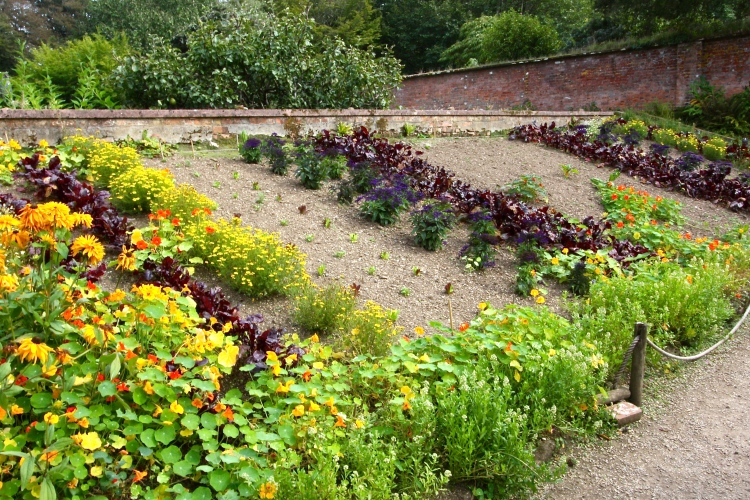 Trengwainton's west-facing raised beds are a unique feature of the walled gardens