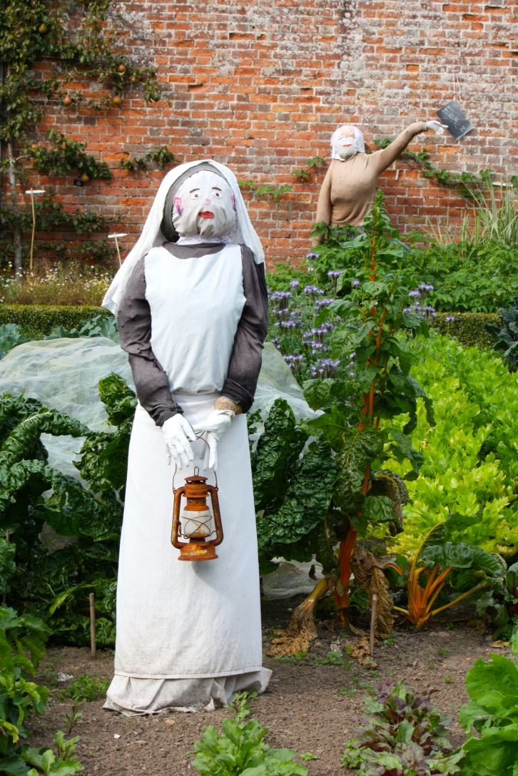 A scarecrow, impersonating Florence Nightingale, keeps watch over the cavolo nero