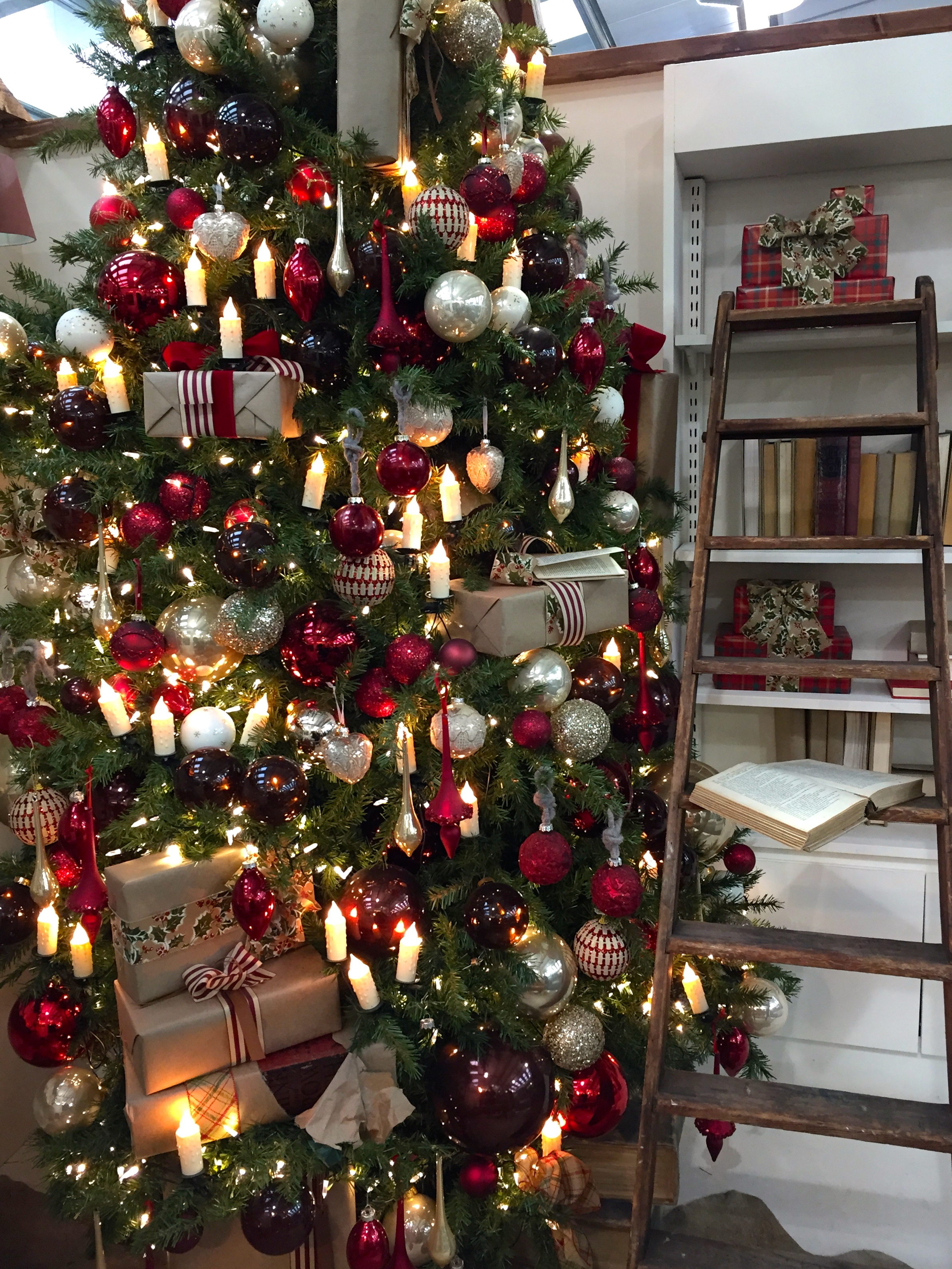 It's Beginning to Look a Lot Like Christmas – The Frustrated Gardener
