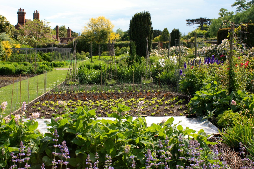 All set for the season ahead, the kitchen garden at Goodnestone Park, Kent