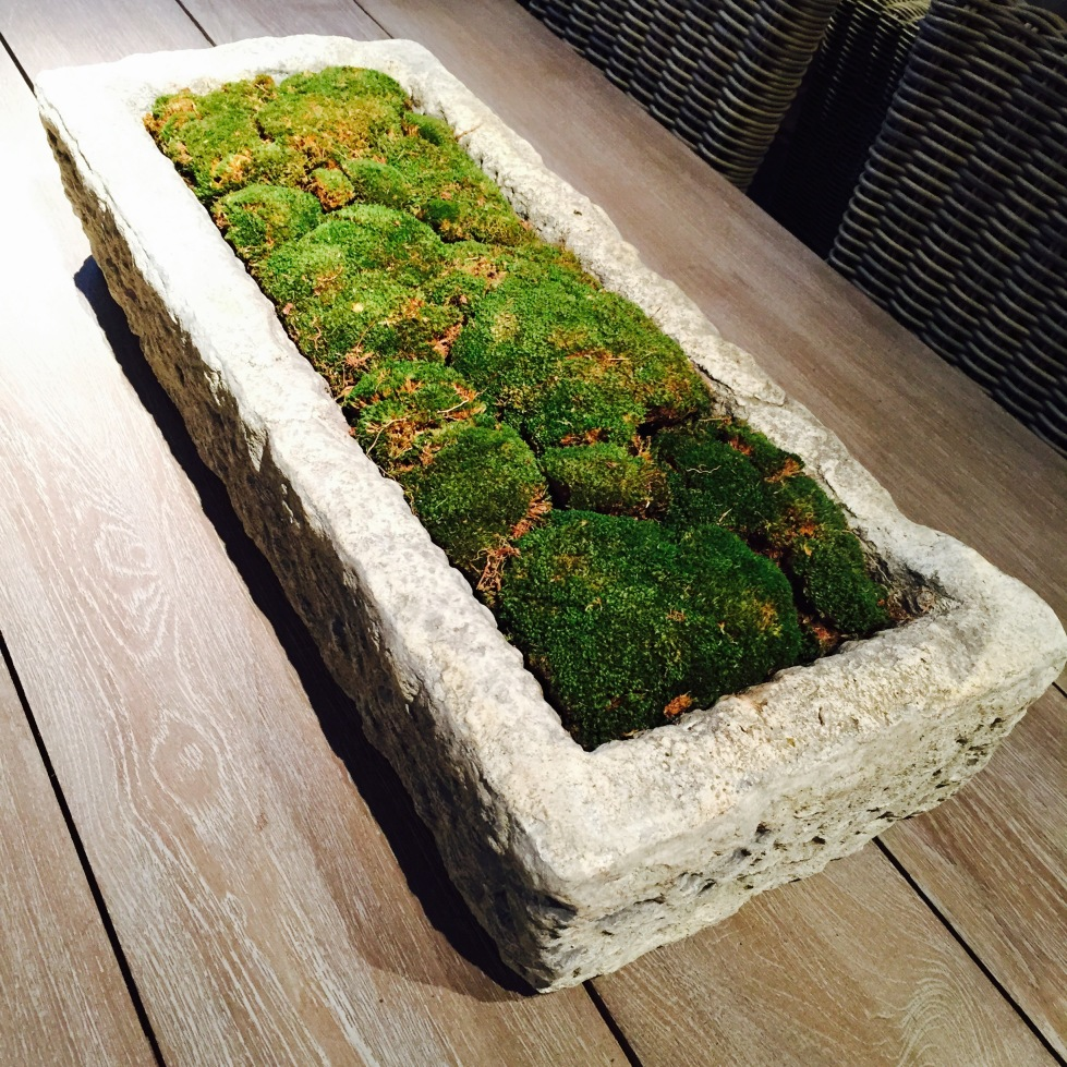 This trough, fashioned from Tufa stone, would soon weather down to match the tones of the moss