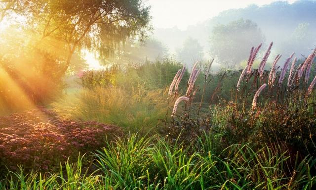 'Layered Landscape: a moment captured' Marianne Majerus