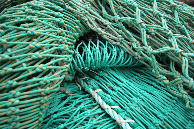 Green fishing nets, Polperro, Cornwall, April 2015