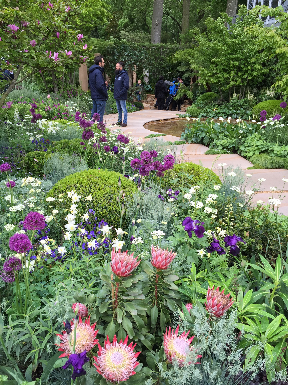 Chelsea flower show 2015 the dream ticket the frustrated gardener - Chelsea garden show ...