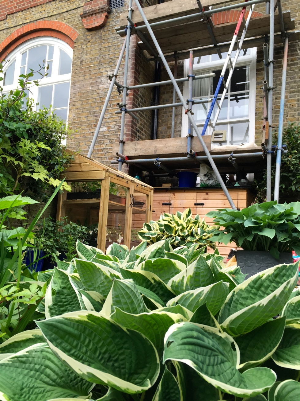 Our London Garden, scaffolding, May 2015