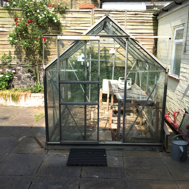 Polegate Cottage, greenhouse, June 2015