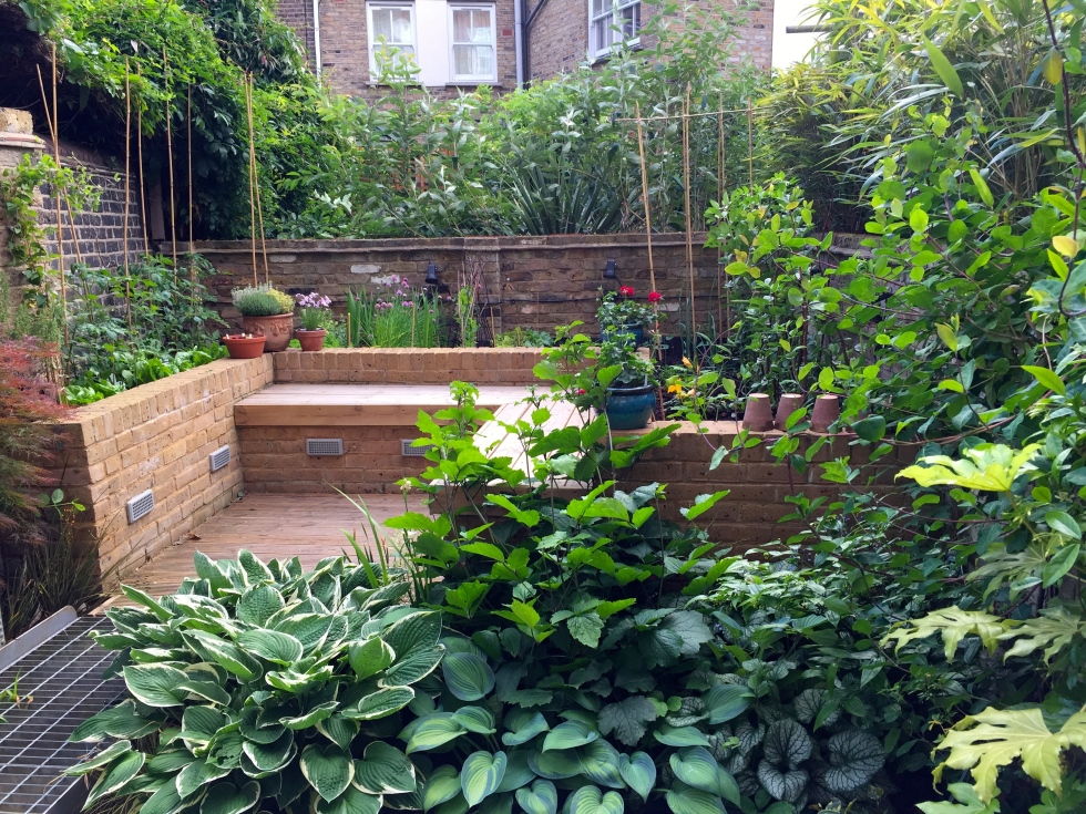 2015 was our first full season with a vegetable garden in London