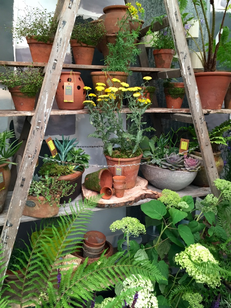 W6 and N1 Garden Centre, Grow London, June 2015