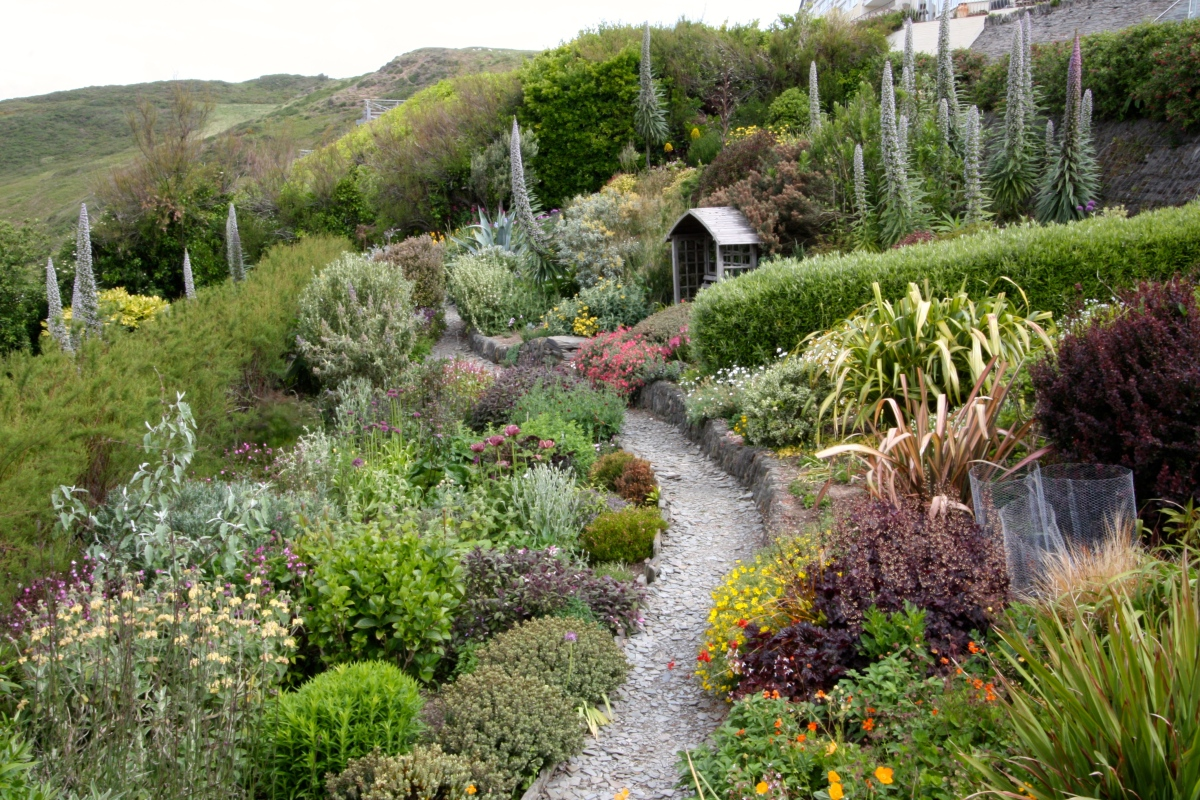 Gardening on the Edge: Foamlea, North Devon