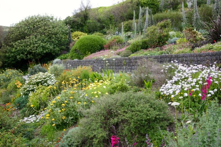 Foamlea, Mortehoe, Devon, June 2015