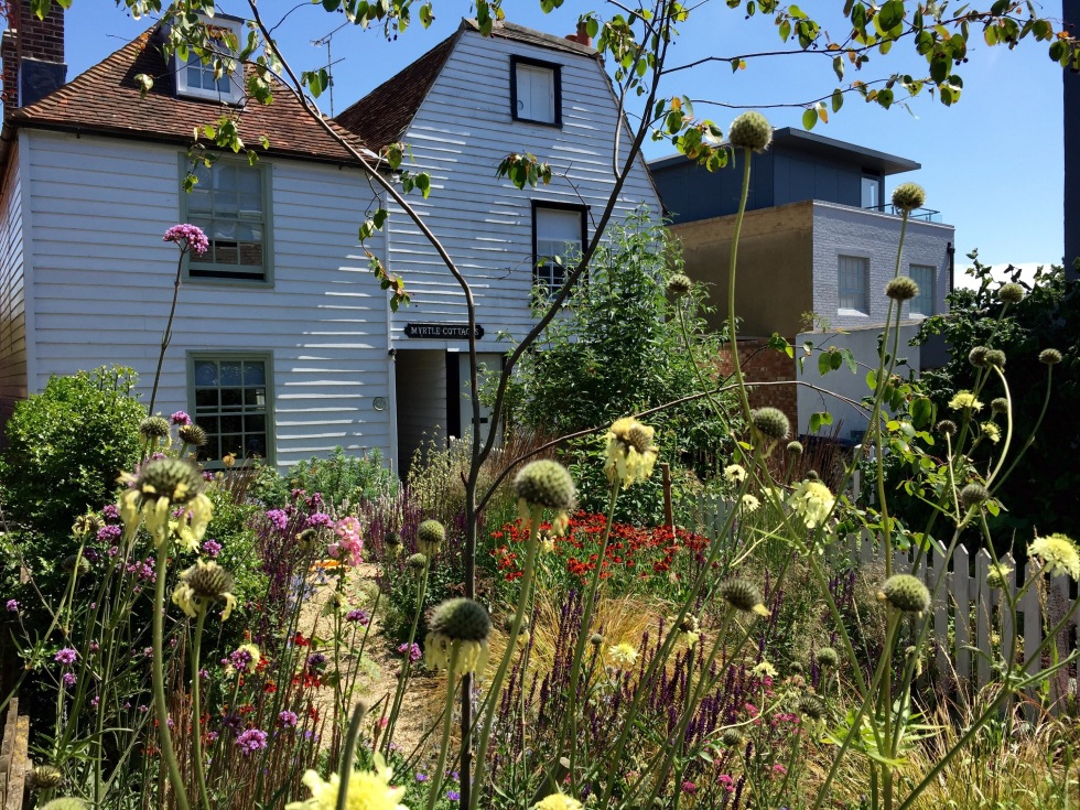 Holiday cottages, Whitstable, July 2015