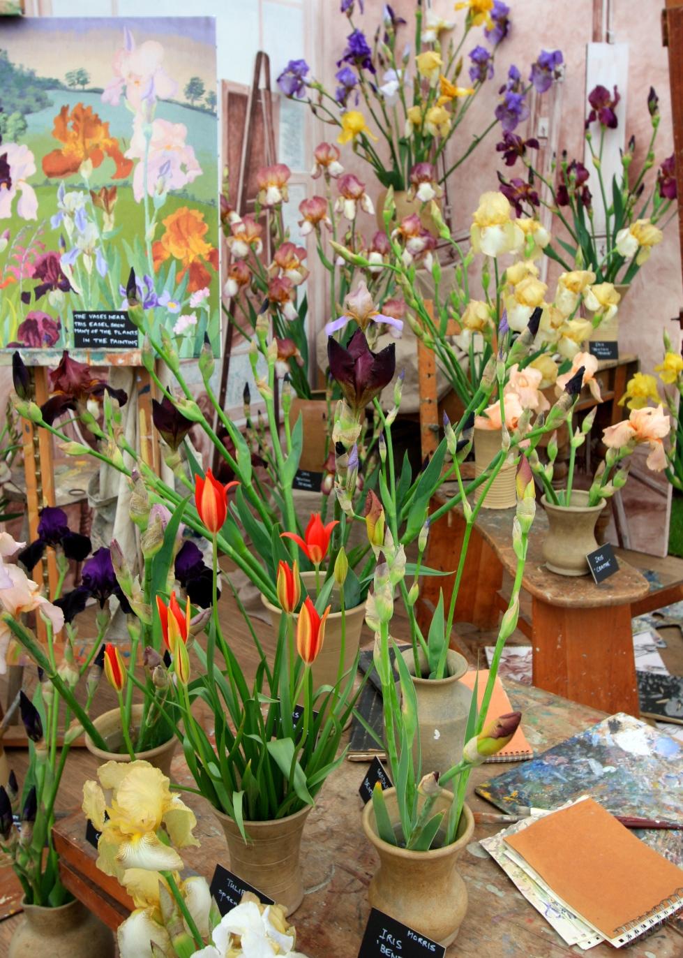 Howard Nurseries' display of Cedric Morris hybrids in an artist's studio setting