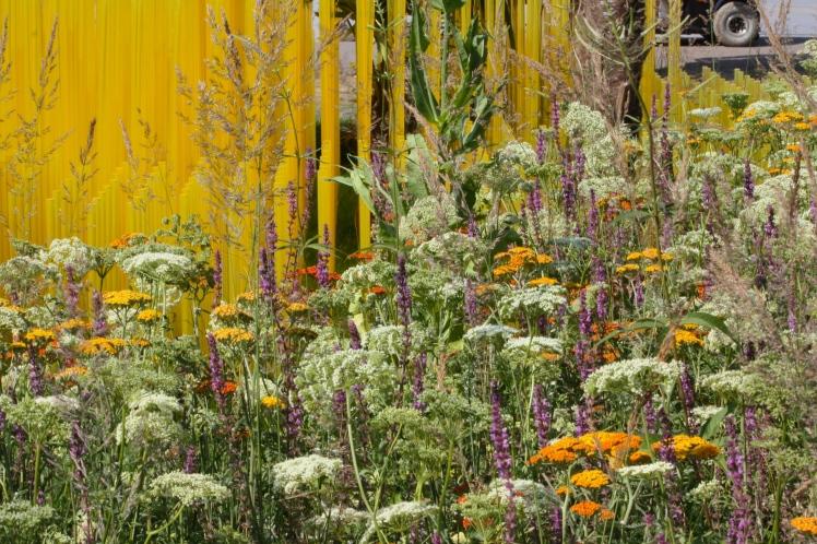 World Vision Garden, John Warland, Hampton Court 2015