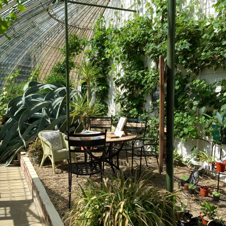 Today, the elegant Italianate Glasshouse is home to vines and succulents