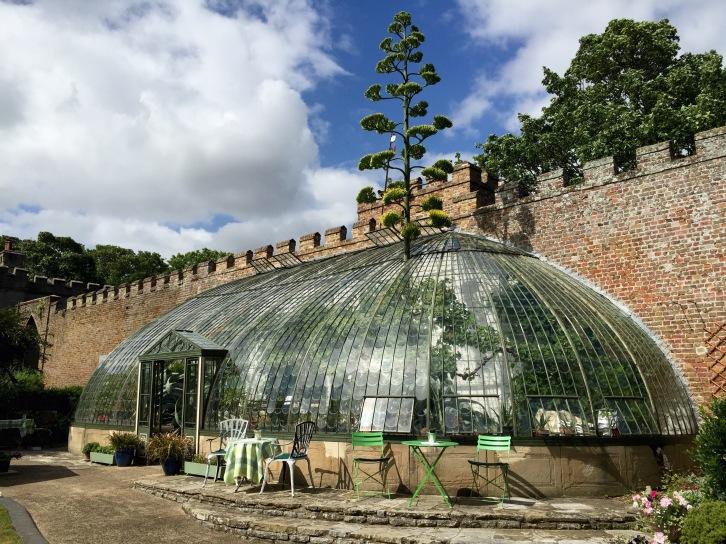 The Italianate Greenhouse, Ramsgate, August 2015