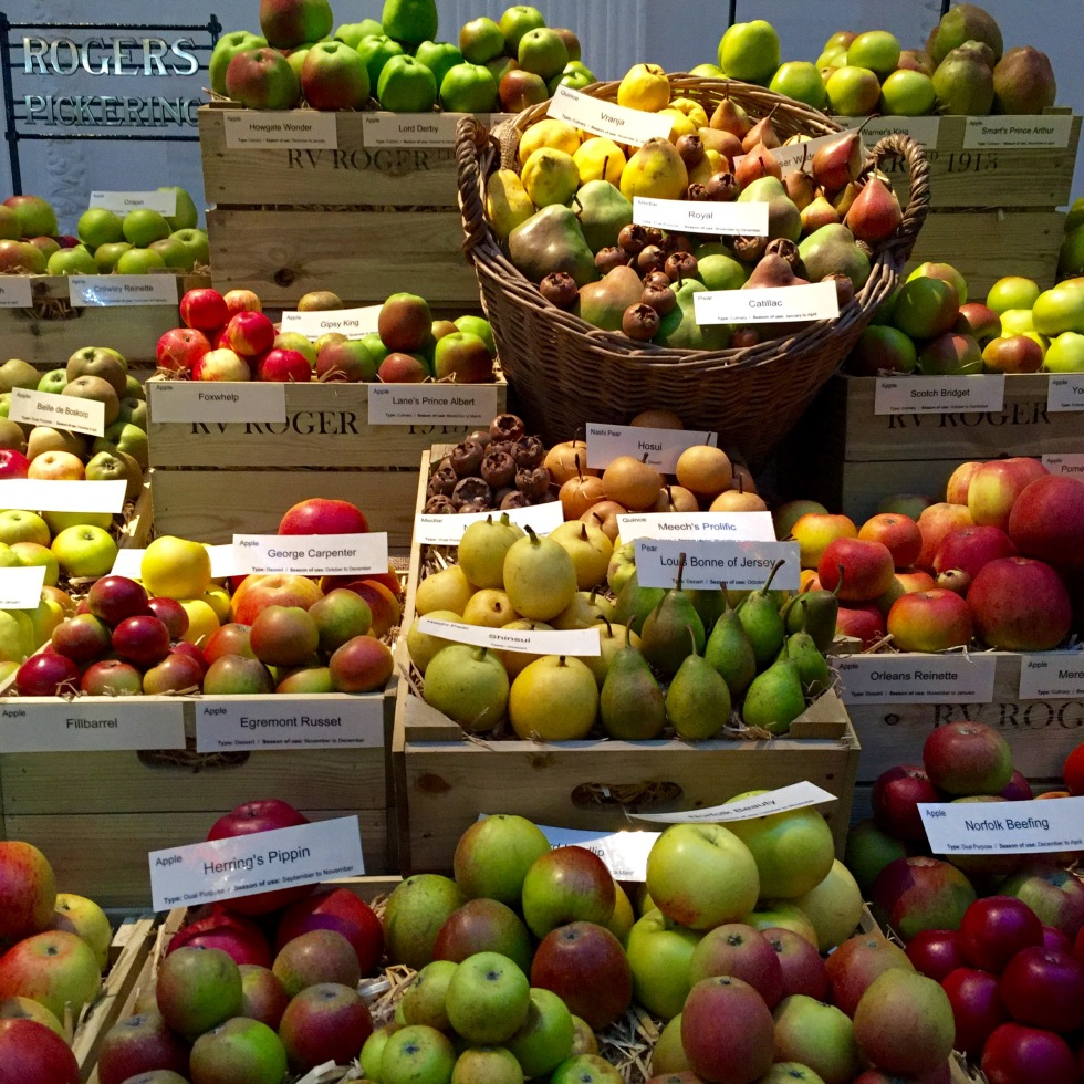 R.V. Roger's display featured over 150 apple varieties, along with medlars and quince